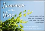 Summer(1)